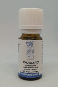 Olio essenziale di Lavanda spica - lavandula latifolia